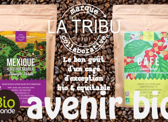 La Tribu, des cafés d'exceptions