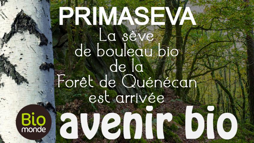 Votre magasin biologique Avenir Bio à rennes vous fait découvrir la sève de bouleau de Primaseva