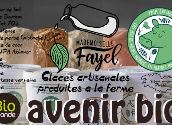 Les glaces de Mademoiselle Fayel