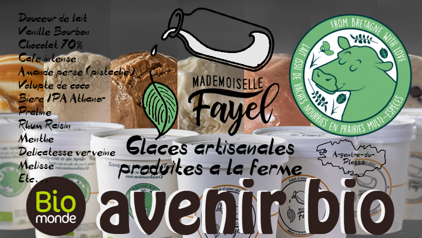 glaces-Mlle-Fayel-magasin-bio-rennes-010
